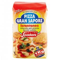 Molino Spadoni Preparato per Pizza Gran Sapore istantanea